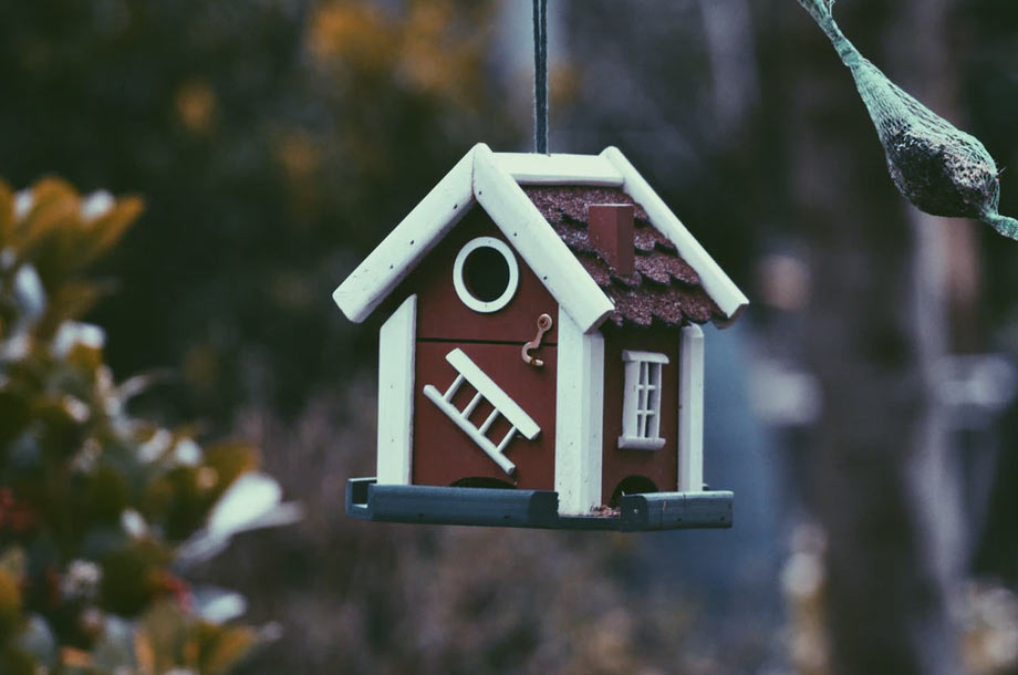 Bird house photo   Home Owners Insurance